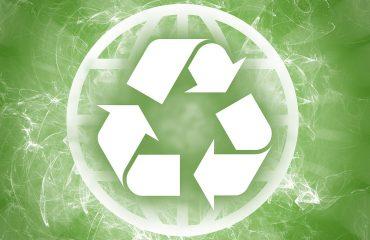 Socially Ecologically Conscious Business